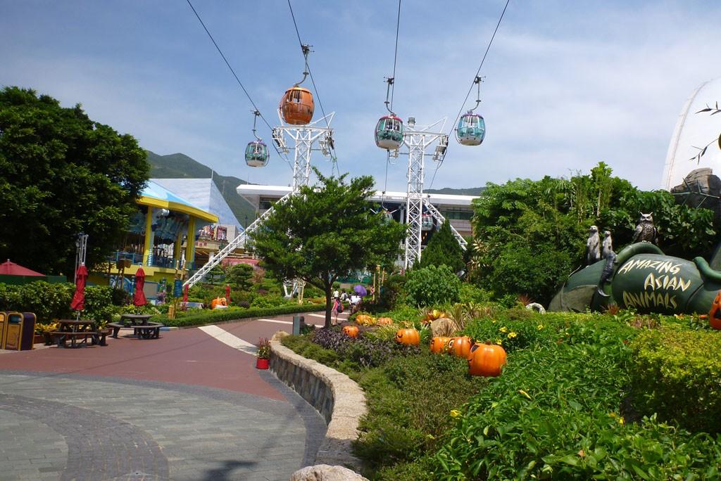 Ocean Park (1)